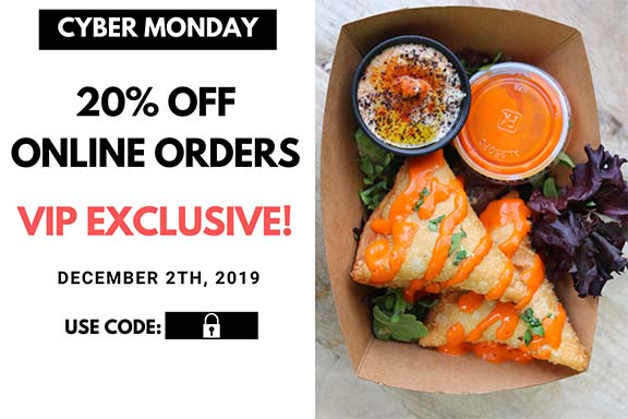 Cyber Monday Flyer - VIPs Get 20%OFF with code